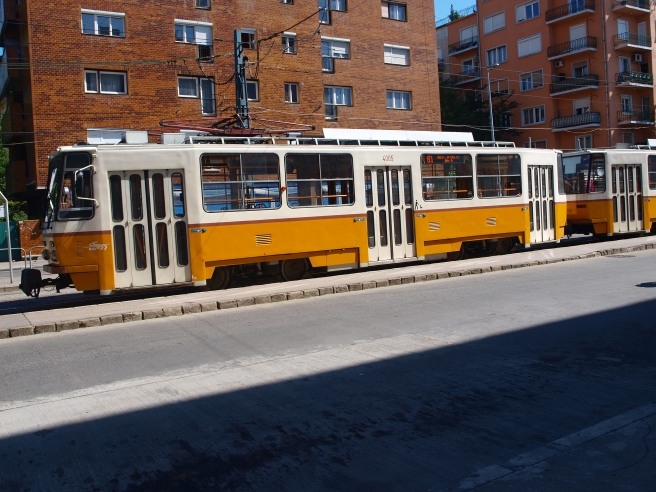 I tram... anche se molto anni Ottanta, sono pulitissimi e puntualissimi... come in Italia!